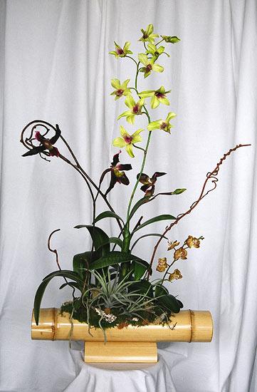 طريقـة تجفيف الأزهار والورود Photo12